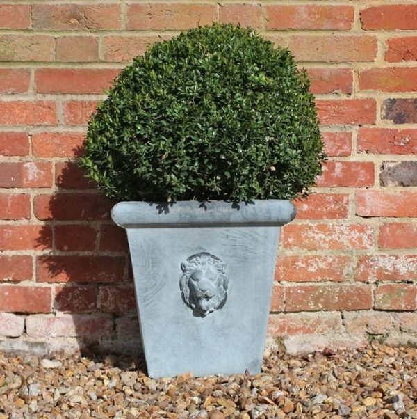 Lion Head Planter Medium by A Place in the Garden