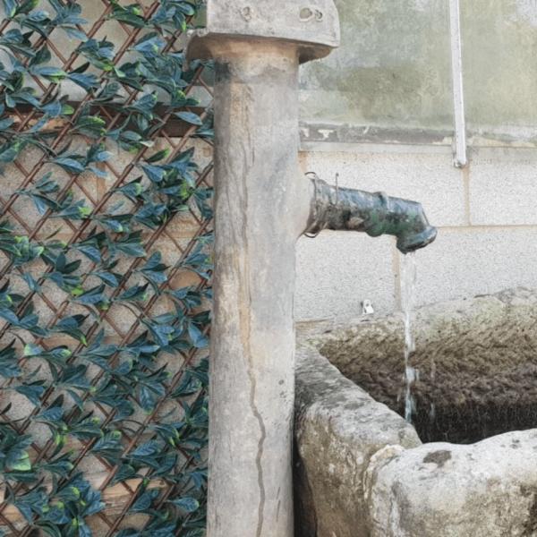 Reclaimed Water Pump