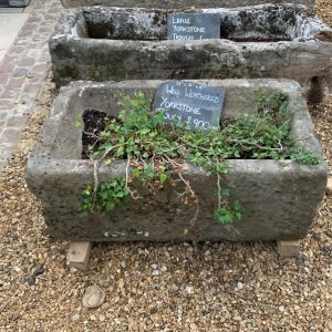 Well Weathered Reclaimed Yorkstone Trough