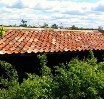 Double Roman Clay Pantile on Roof