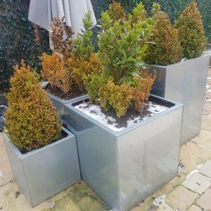 Galvanised Planters