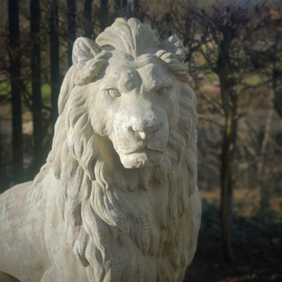 Extra Large Stone Lion